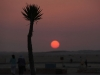 el-alamein-sunset